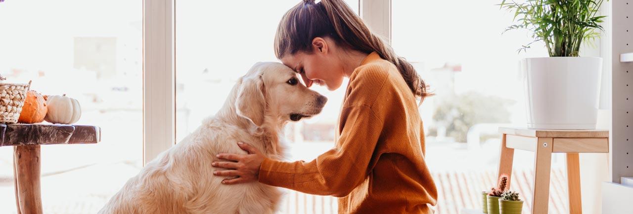 Ernährungsberatung für Tier und Mensch
